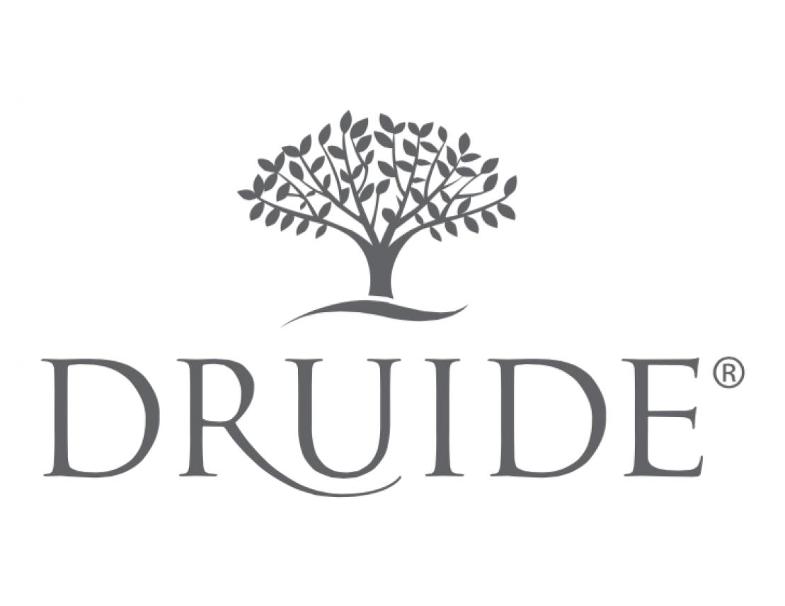 DRUIDE_logo